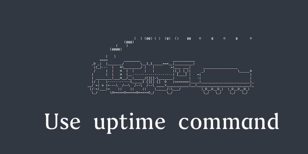 Linux 中的 uptime 命令详解