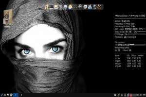 4mlinux-21.0-desktop.png