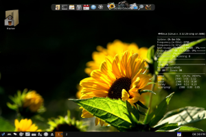 4mlinux-9.1-desktop.png