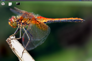 dragonflybsd-2.2.png