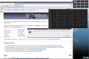 elive-2.3.9-beta-installer.png