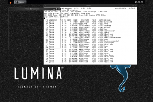 freebsd-11.0-hiding-pids.png
