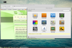 mint-2-lmde-software.png