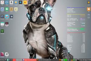 puppy-8.0.jpg